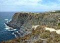 Cabo Sardão - Flysch Baixo Alentejo.jpg