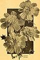 California gardening (1932) (20488396396).jpg