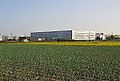 Camp de cebes i facultat de Belles Arts, València.JPG