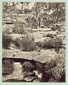 Cascade and rocks, (Royal National Park, New South Wales). (6173945718).jpg