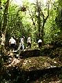 Caverna de las Cascadas, Camino a la Entrada Principal, Logroño.JPG