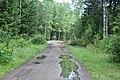 Ceļš, Jaunbērzes pagasts, Dobeles novads, Latvia - panoramio.jpg
