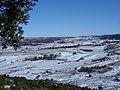 Cerro el Otero (2007) - panoramio.jpg
