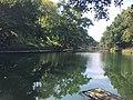 Chapultepec Ecological Park, lake.jpg