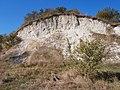 Cherkas'kyi district, Cherkas'ka oblast, Ukraine - panoramio - юра запеченко (179).jpg