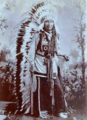 Chief American Horse, Wild Wester.png