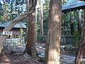 Chihaya Castle09.jpg