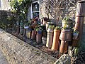 Chimney pots as planters - geograph.org.uk - 1098627.jpg