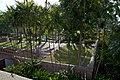 Choeng Thale, Thalang District, Phuket 83110, Thailand - panoramio (17).jpg