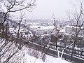 Chotkovy sady - panoramio.jpg