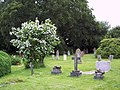 Churchyard at The Church of the Ascension - geograph.org.uk - 474110.jpg