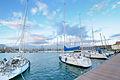Circolo Nautico NIC Porto di Catania - Sicilia Italy Italia - Creative Commons by gnuckx (5437211074).jpg