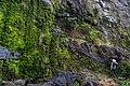 Cliffs (209049497).jpeg