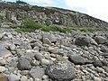 Cliffs near Rubha Garbhard - geograph.org.uk - 2404976.jpg