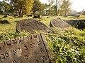 Cmentarz żydowski w Białymstoku, fragment2.JPG