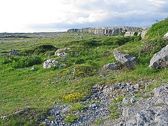 Ballyryan - Ballyryan crag from the south