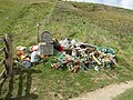 Collected Beach Litter at Scabbacombe Sands.jpg