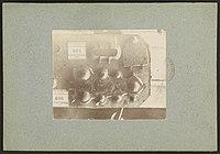 Collection de Chasteigner - J-A Brutails - Université Bordeaux Montaigne - 0287.jpg