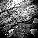 Columbia Glacier, Valley Glacier Edge, Terminus, September 15, 1975 (GLACIERS 1273).jpg