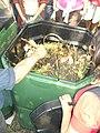 Compost bin image.jpg