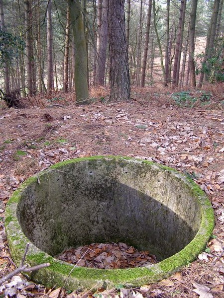 File:Concrete remains in Newlands Plantation, New Forest - geograph.org.uk - 314562.jpg