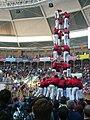 Concurs de Castells 2008 P1220435.JPG