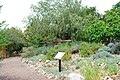 Conejo valley botanic garden 2.jpg