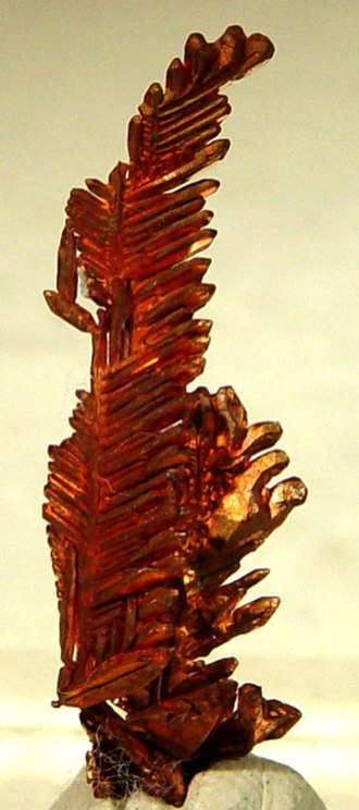 "Mindat.org - Crystalline copper ""feather"" from Itauz Mine, Kazakhstan, an example of a photo from the mindat database"