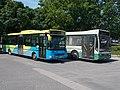 Credo busz (MMC-449) és NABI busz (FKA-694), 2019 Siófok.jpg