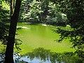 Creek at East Greenbush Town Park - panoramio.jpg