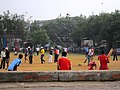 Cricket, anyone? (5355931145).jpg
