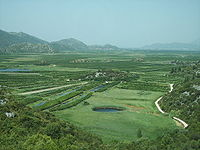 Il fertile delta della Narenta.