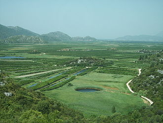 Neretva Delta - The fresh water from the river allows for green fields that are visibly distinct from the surrounding rugged karst terrain.