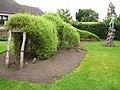Crocodile hedge sculpture - geograph.org.uk - 574987.jpg