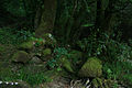 Cruce de ríos (4618032284).jpg