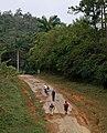 Cuba 2013-01-28 (8560704297).jpg