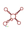 Cuckoo RNA consensus structure (four stem-loops).pdf
