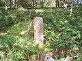 Cumbrae, Standing Stone - geograph.org.uk - 45895.jpg