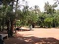 jardin plantation mois par mois