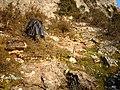 DEMMER3 - panoramio.jpg