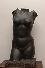 Women's torso