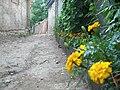 Dardeh (Zooar) - panoramio.jpg