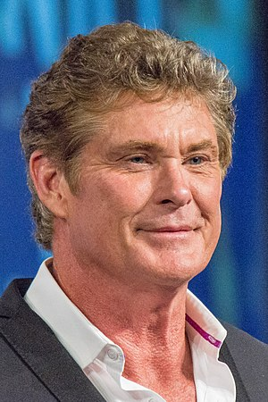 Britain's Got Talent - Hasselhoff previously worked as a judge on America's Got Talent, before joining the show for the 2011 series.
