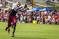 DeSean Jackson 2014 Redskins training camp.jpg