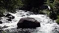 Deer Creek rapids-rock (18471487334).jpg
