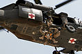 Defense.gov News Photo 110716-A-6909A-163 - U.S. Army Staff Sgt. Travis Brown and a German soldier are hoisted up into a UH-60L Black Hawk helicopter during rescue hoist training at Camp.jpg