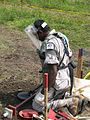 Demining in Sri Lanka, 2010. Photo- AusAID (10691701943).jpg