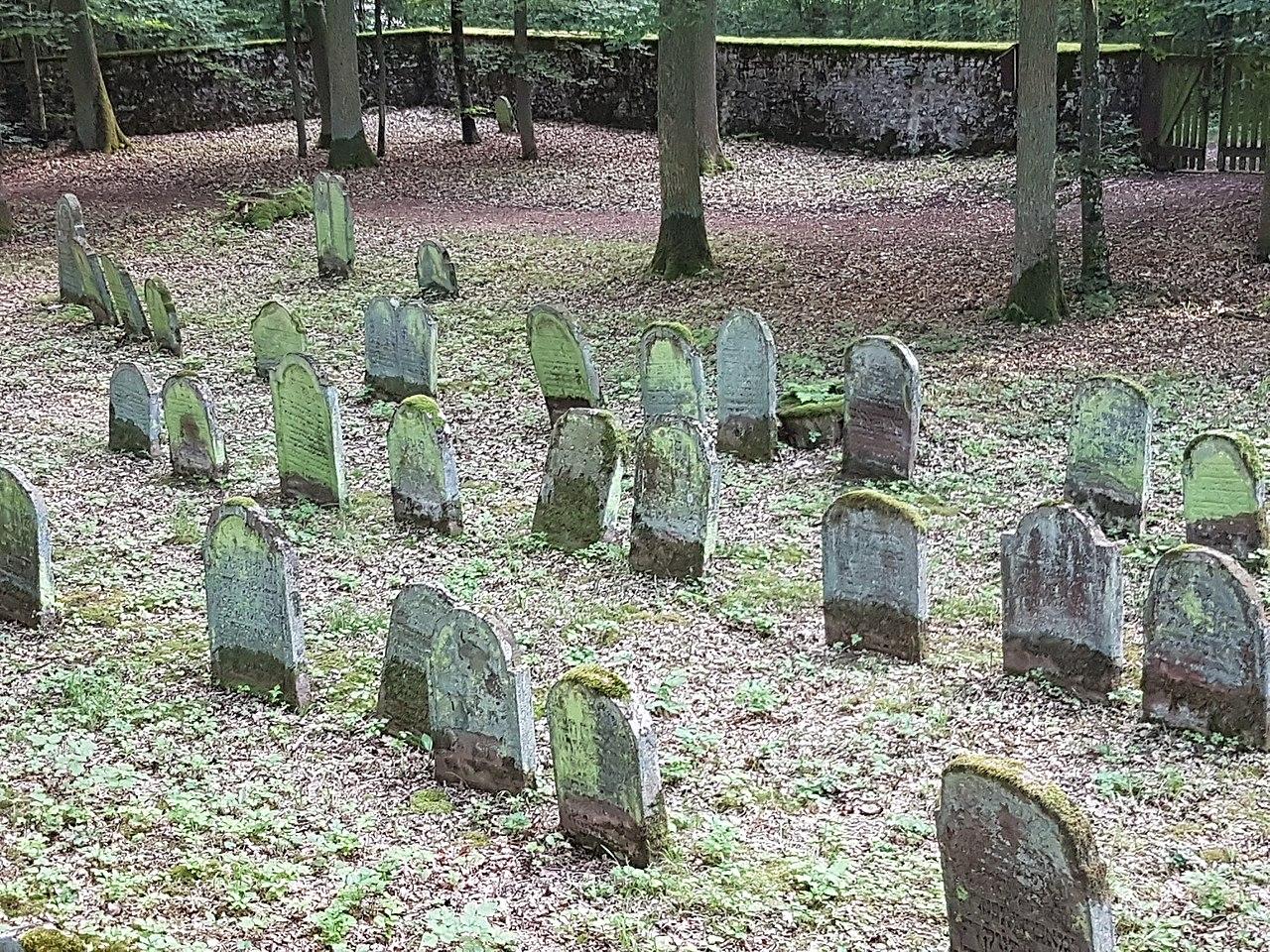 Der jüdische Friedhof in Wenkheim 10.jpg