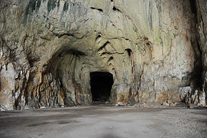 Devetashka cave - bats and crag martins populate the site