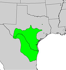 Diospyros texana range map.jpg